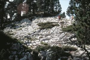 TectonicKarren