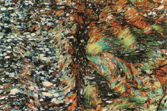 195-image5-microscope