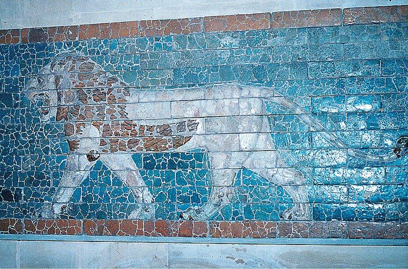 292-zig-lion