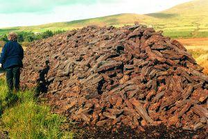 328-coal-peat-pile