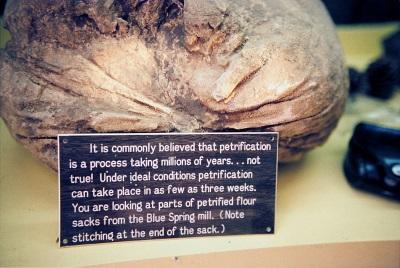 petrified-flour