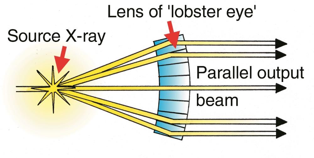 Lobster Eyes Brilliant Geometric Design Creation