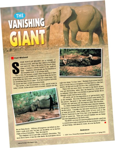 vanishing-giant