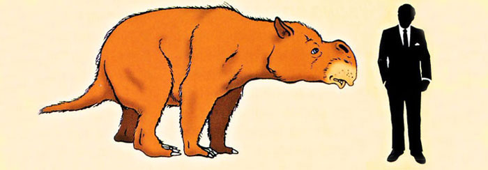 Diprotodon-reconstruction