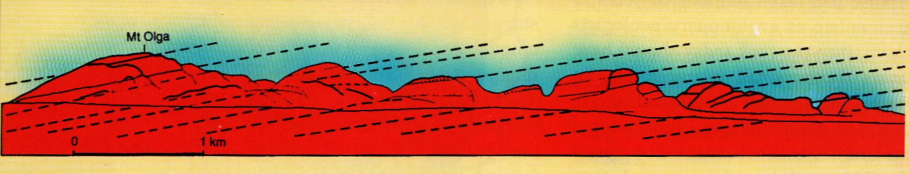 798-olgas-cross-section