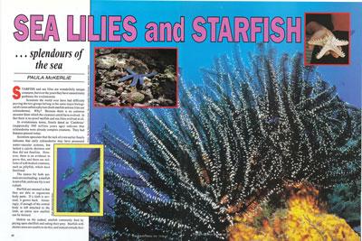 sea-lilies