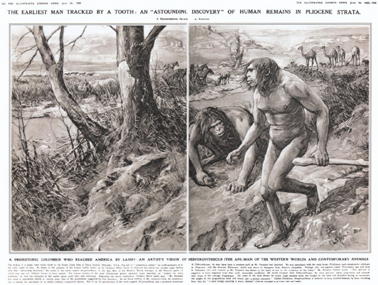 1271-Illustrated-London-News-Hesperopithecus