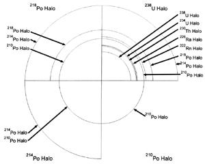 RadioHaloTypes