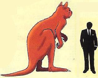 giant-kangaroo