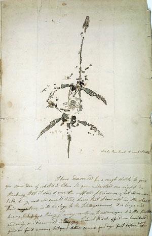 PlesiosaurSketch