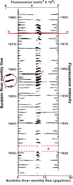Burdekin-flows-fluorescence-intensity