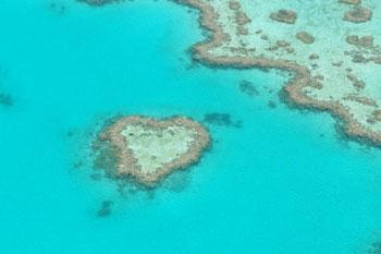 heart-reef1
