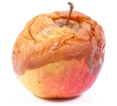 decomposing-apple