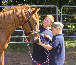 6023-patting-horse