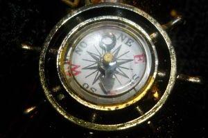 7230-compass