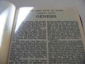 7508-Genesis