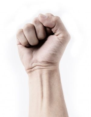 8394-fist