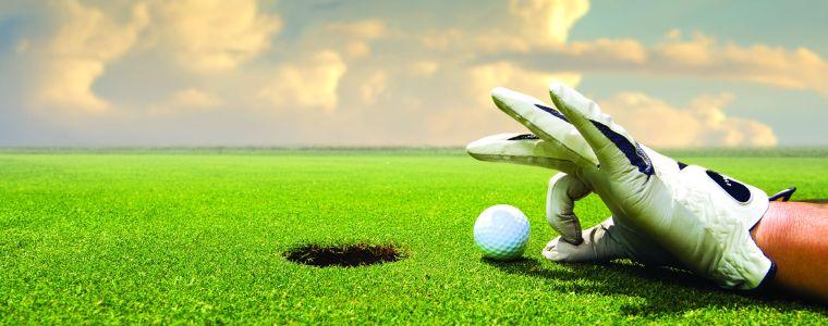 8503-golf