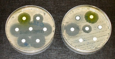 8724-superbugs