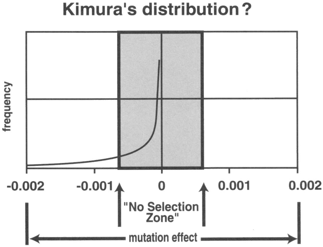 Genetic entropy creation kimura mutations diagram pooptronica