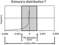 Kimura mutations diagram