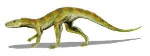 9357-hesperosuchus
