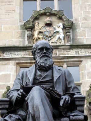 9392-Darwin-statue