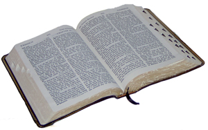 9491-bible