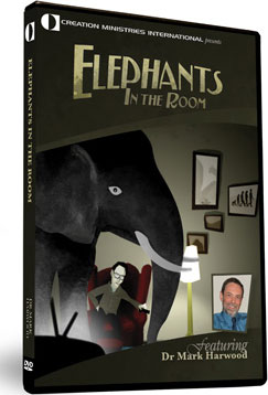elephants-in-the-room