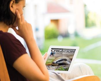 reading-creation