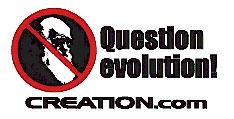 9546question-evolution