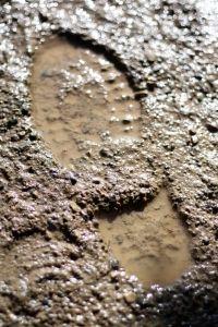 9563-mud-shoe-print