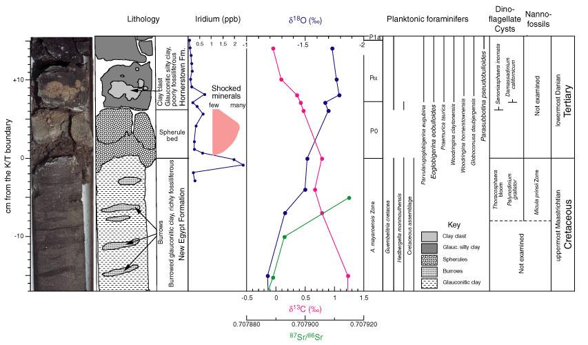 Cretaceous-Tertiary