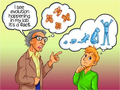 evolution-happening-in-lab.png