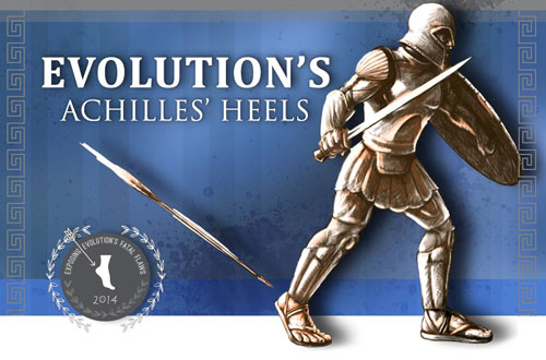 Evolution-achilles-heels