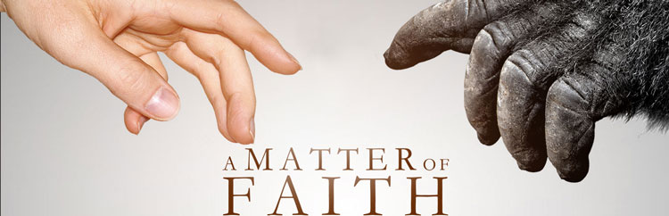 a-matter-of-faith