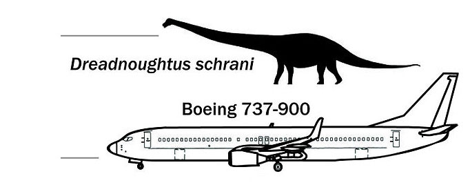 Dreadnoughtus-schrani