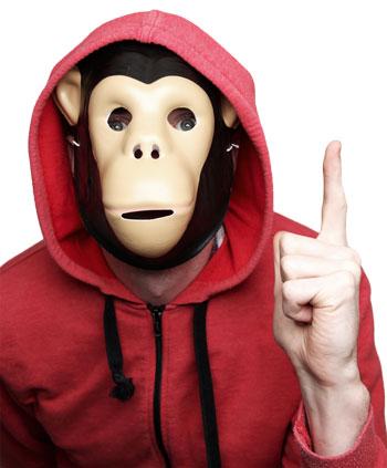 human-chimp