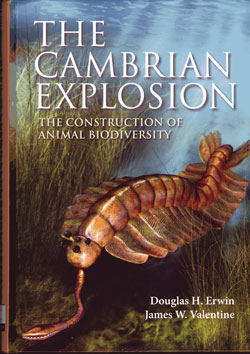 Cambrian-explosion