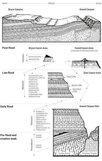 Austin-stratigraphic-section