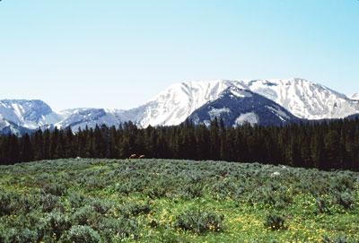 Gypsum-mountain