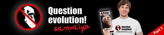 8223evolution-campaign