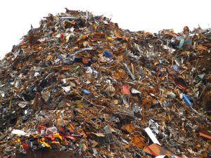 大段的人类DNA是进化的残余,是无用的垃圾,这个观念本身已逐渐变成垃圾了。