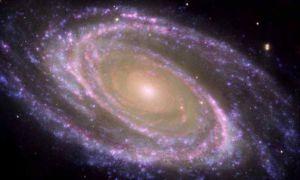8095-messier81galaxy2