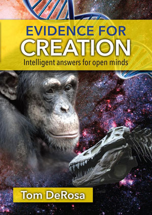 evidence-for-creation