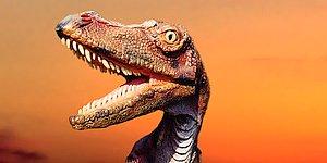 10728-dinosaur