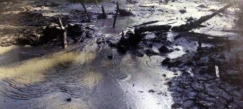 11190-Wootton-Basset-mud-spring-Korean