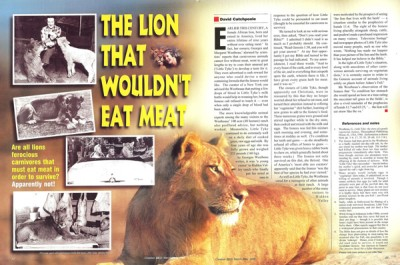 11253-lion-wont-eat-meat