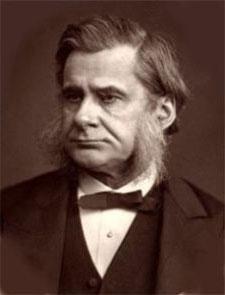 Thomas-Huxley