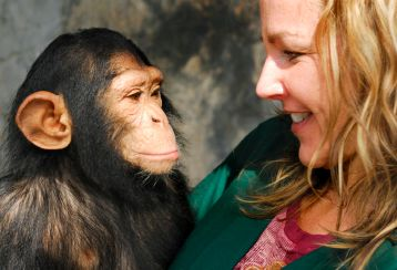 girl-and-chimp